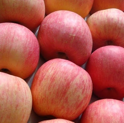 sweet fresh fuji apples for sale at very good price