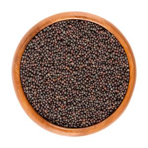 High quality ukranian rapeseed canola seeds