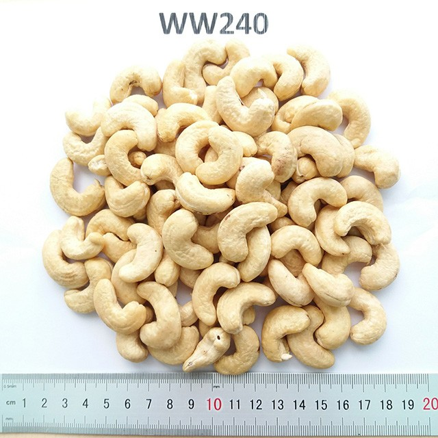 Dried Cashew Kernels From Vietnam,Asia With All Grades