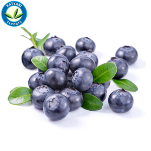 Pure and Natural Blueberry Seed's Essential Oil