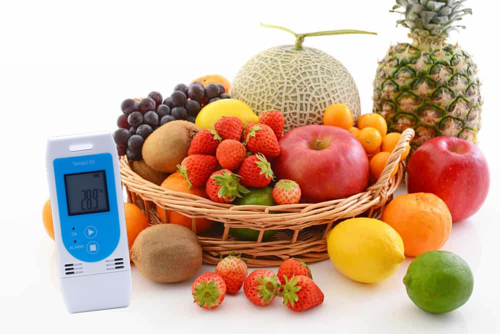 New Product Fresh Food Transport Temperature and Humidity Data Logger
