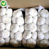 /product-detail/chinese-exporters-wholesale-natural-fresh-white-garlic-60767012845.html