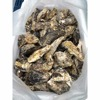 Japan high quality frozen half shell oyster for sale
