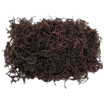 July On Demand Premium Grade Original Natural Sabah Dried Seaweed - Buy  July On Demand Fresh Seaweed,Premium Grade Natural Seaweed,Malaysia Sabah