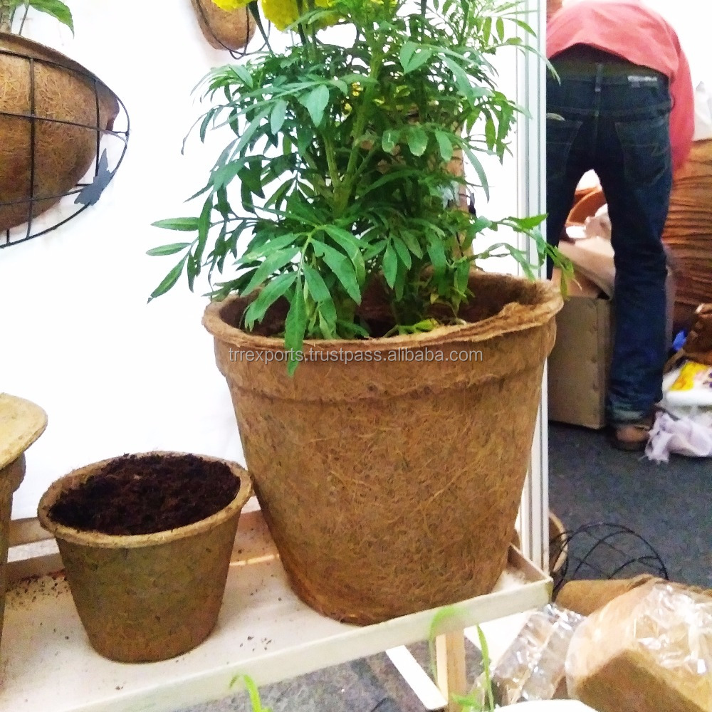Extra Large Plant Pots Extra Large Plant Pots Suppliers And