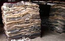 Dry & Wet Salted Cow Hides & Other Animal Skins