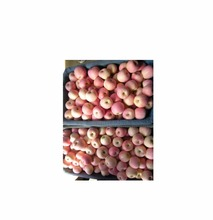 Hot selling bulk fresh green delicious apples
