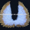 feather human white angel wings