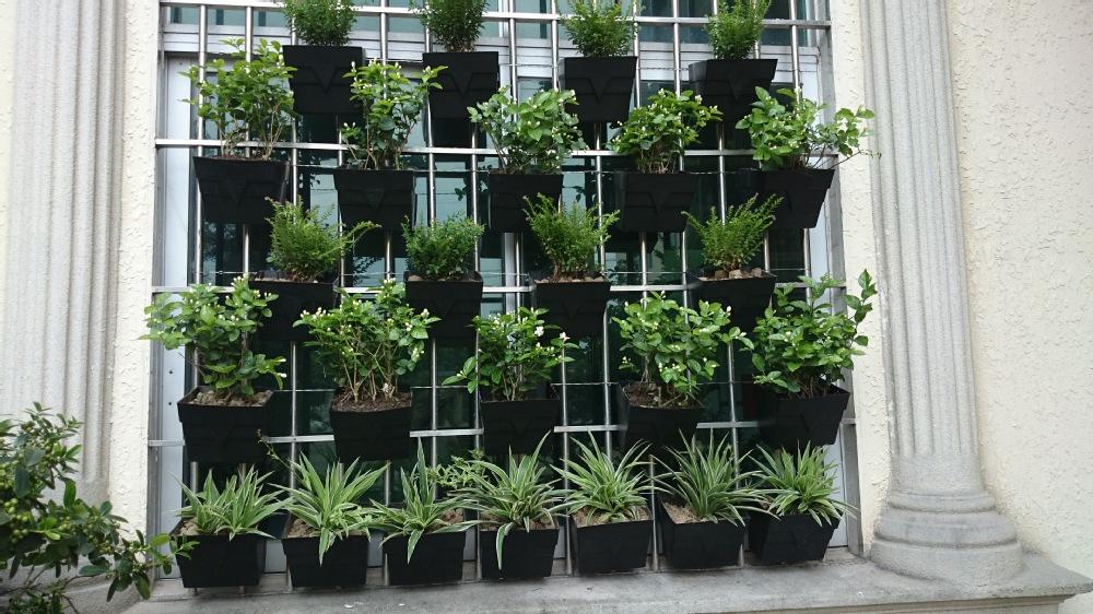 Economical vertical gardens vertical garden hook pots vertical garden modular