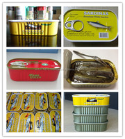 Quality Canned Sardine Fish/ Canned Mackerel/Canned Sardine Tuna Fish in Vegetable Oil