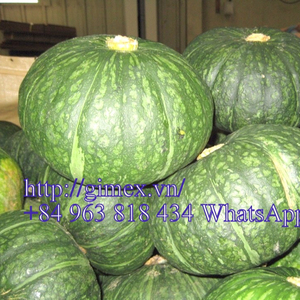 Vietnam Fresh Pumpkin +84963818434 whatsapp