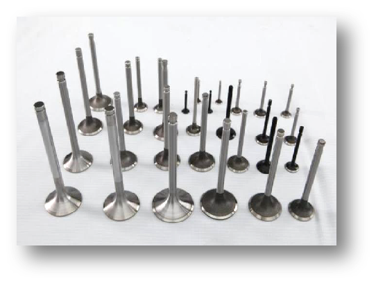 EV16  Engine Valves  Intake Valves Exhaust Valves