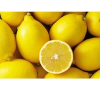 Hot sale cheap price fresh eureka lemons From South Africa
