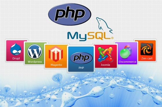 Movie Php Web Development Company