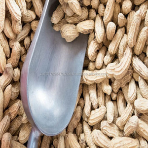 Bulk peanuts for sale, Raw peanuts for sale