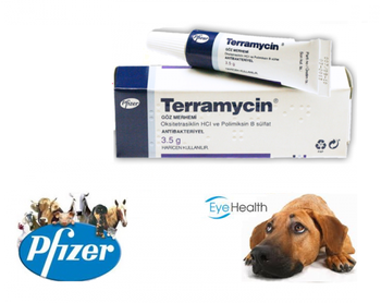 Hakkari pharmacokinetics of chloroquine and monodesethylchloroquine in pregnancy