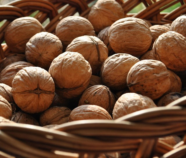 Cheap Price Walnuts in Shell/Walnuts Kernels for Sale