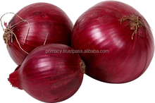 Indian Nashik 55mm+ Red - Pink Onions