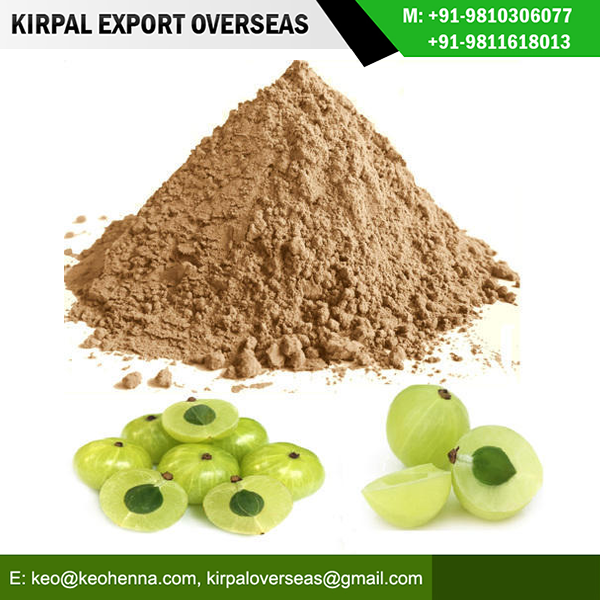 Natural 100% Organic Herbal Real Triple Refined Best High Quality Amla Powder Manufacturer Exporter