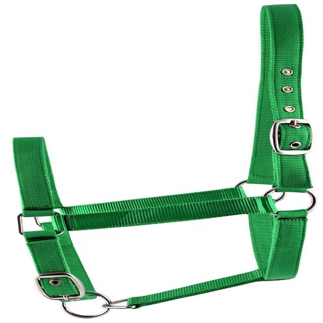 NEW HORSE TACK Showman PURPLE Woven Nylon Mule Tape Halter w// Removable 8/' Lead