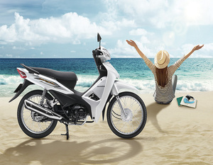 Best sale gear motorcycle manufactured in Vietnam