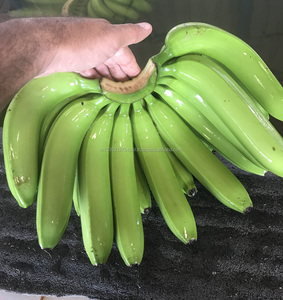 Banana Importers, Banana Importers Suppliers and