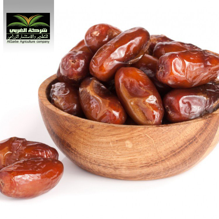 Saudi Arabia Ksa, Saudi Arabia Ksa Manufacturers and