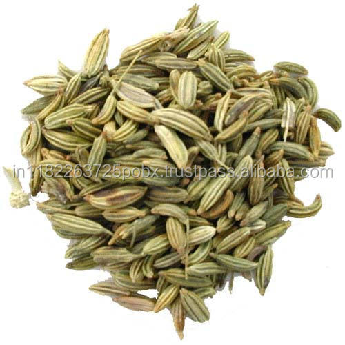 Fennel Sweet Essential Oil 100% Pure and Natural