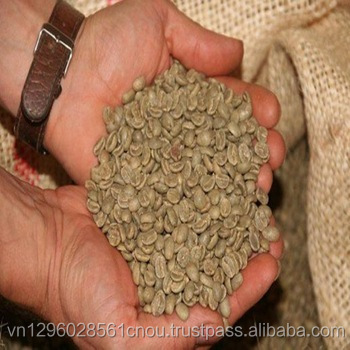 GOOD QUALITY UNWASHED ROBUSTA COFFEE BEANS FROM VIETNAM SCR 18 - Mr. Torres