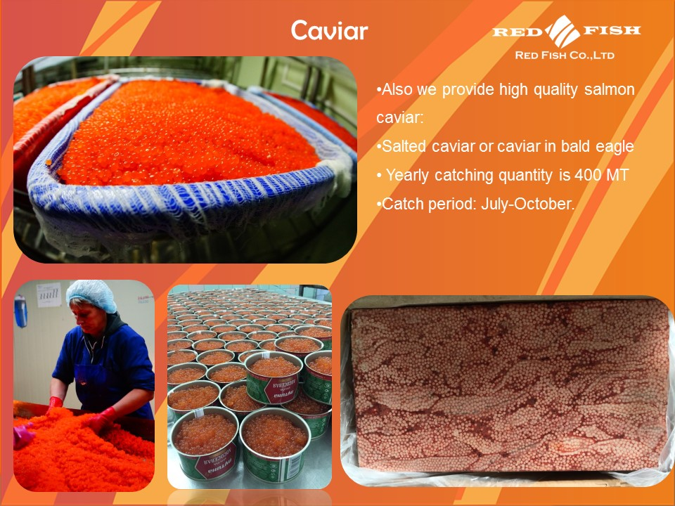 Caviar in Overy from Pink Salmon and Chum Salmon from Russia Sakhalin