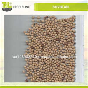 Soybean/Soya Bean, Soybean Seeds, Soya Bean Seeds for sale