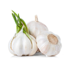 /product-detail/fresh-garlic-in-south-africa-62008541662.html