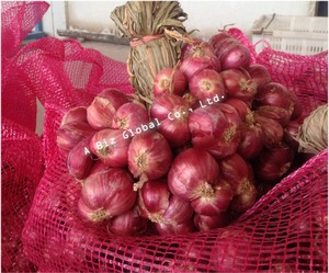 Red Onion Shallot Fresh From THAILAND
