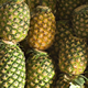 fresh pineapple specification,fresh pineapple buyers,pineapple fruit
