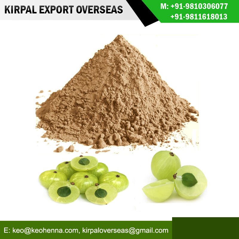 manufacturer amla powder .jpg