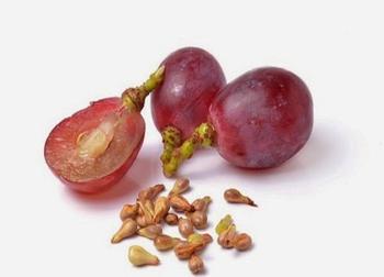 Grape Seeds For Sale - Buy Italian Grape Seed Oil,Dried Grape ...