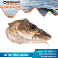 Best Quality Cod Fish Head at Best Price