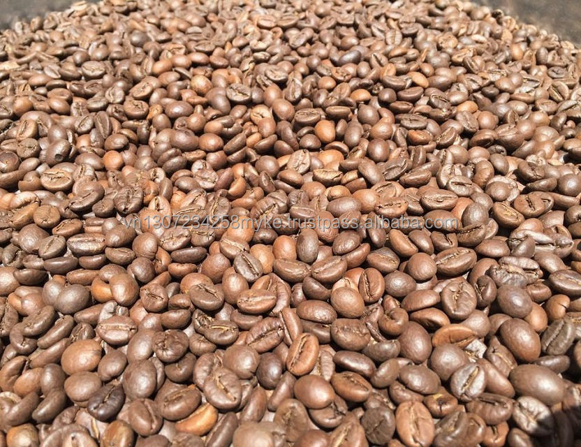 High quality coffee beans with best price wholesaler