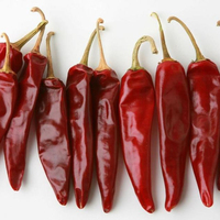 Best Quality Fresh/Dried Chili/Red Pepper at affordable prices