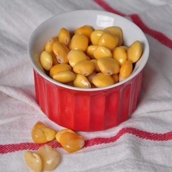 lupini beans for Cooking & Baking High Quality Standard/ Lupini
