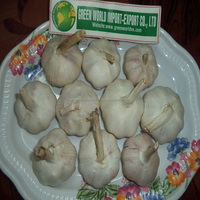 GARLIC WITH HIGHEST QUALITY AND BEST PRICE FROM VIETNAM