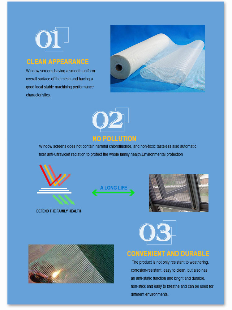 00 mosquito net.jpg