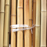 Lowest price Bamboo poles for gardening and fishing rod