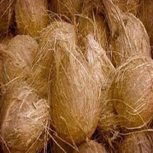 fresh import coconut