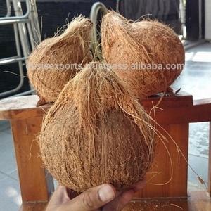 Fresh Coconut Importers In UAE