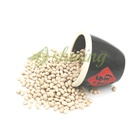 Hot Wholesale Price Of White Kidney Navy Beans Specifications