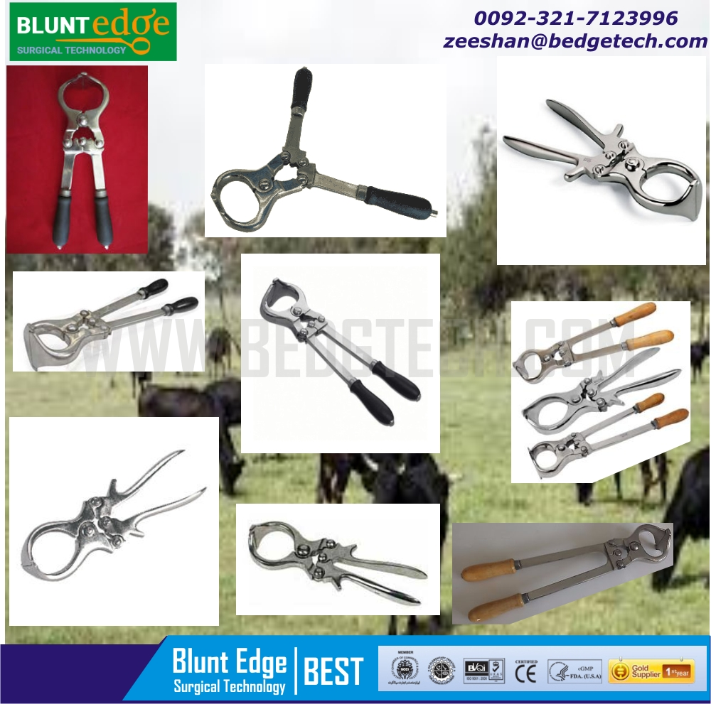 Castration Of Sheep And Goats Burdizzo - Buy Castration Tool,Castration  Equipment,Castration Pliers Product on Alibaba com