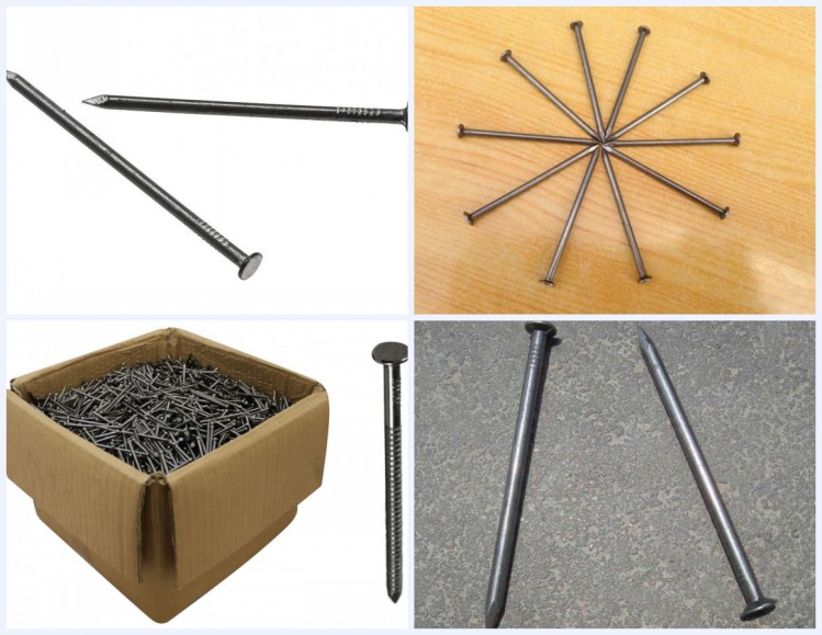 Common naisl iron nails factory Polished Common Nail professional manufacturer