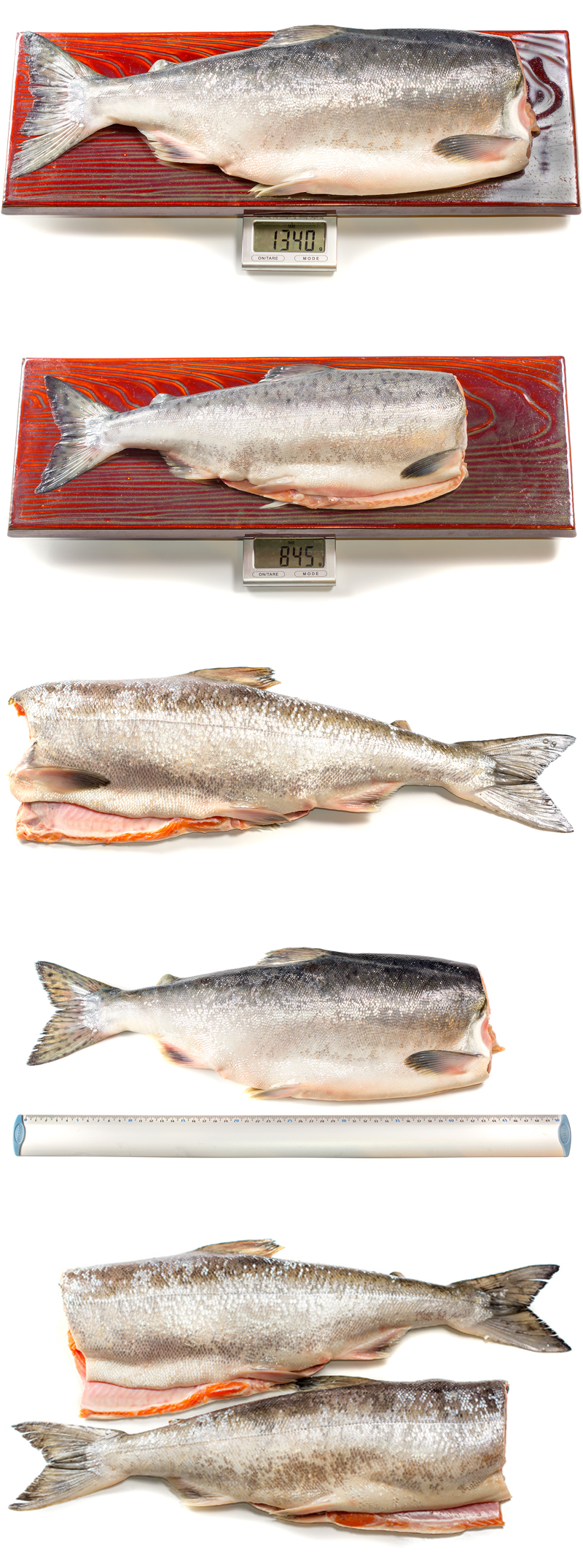 Ultimate Quality Frozen Chum Salmon at Best Price