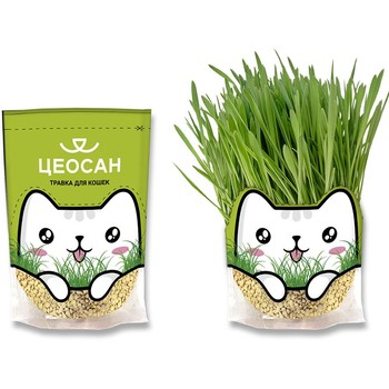 100% Natural Grass for cats ZEOSAN, 0,5 l